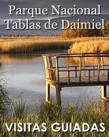 Tablas de Daimiel Almagro