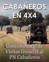 Concesionaria visitas 4x4 al PN Cabañeros