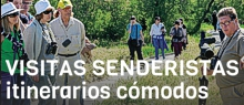 VISITA SEND TABLAS