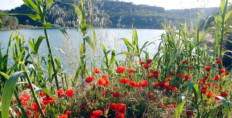 Primavera Lagunas de Ruidera